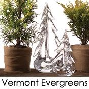 Simon Pearce's Vermont Evergreens